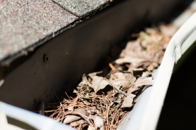 Gutter cleaning in Chester